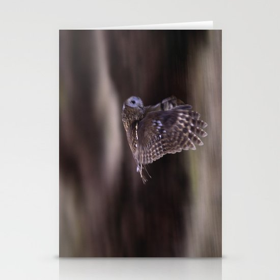 TAWNY OWL FLIGHT Stationery Cards