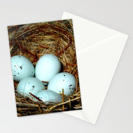 Little Bird Series: Eggs (2) Stationery Cards