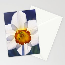 the genus of narcissus Stationery Cards