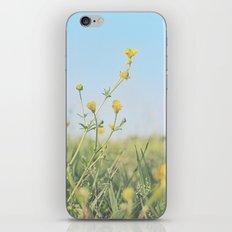 Aim for the Skies iPhone & iPod Skin