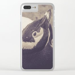Adorable African Penguin Series 1 of 4 Clear iPhone Case