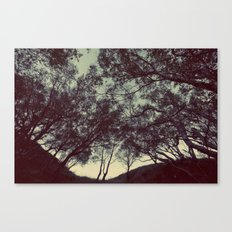 String theory Canvas Print