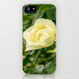 City of York Rose iPhone Case
