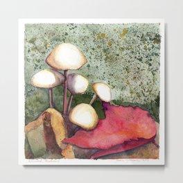 Adirondack Mushrooms Metal Print