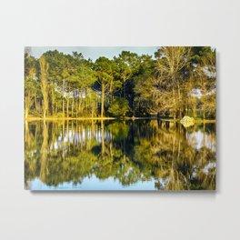 Crossing the Lake - Colorful Metal Print