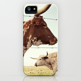Texas Longhorn Cattle iPhone Case