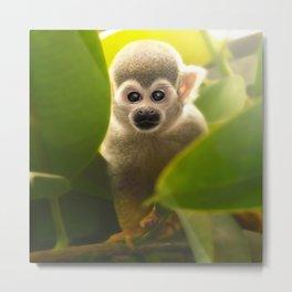 baby skull monkey Metal Print