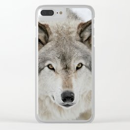 Winter Timber Wolf Clear iPhone Case