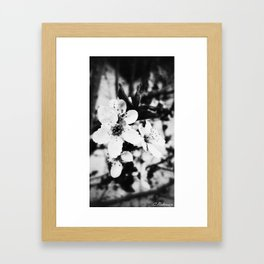 Spring has sprung Framed Art Print
