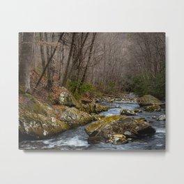 Tellico River Metal Print