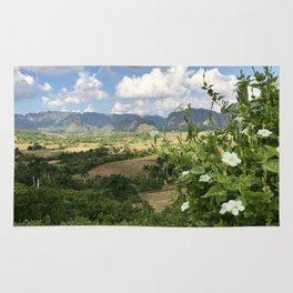 Viñales Valley views Rug