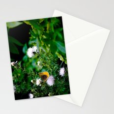 Old Style Butterfly  Stationery Cards