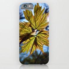 'Springtime' Slim Case iPhone 6s