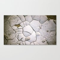 shell Canvas Prints featuring Shell by CrookedHeart