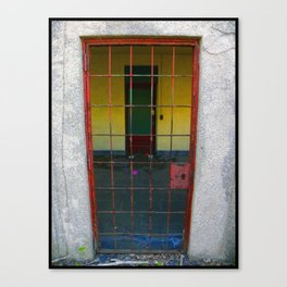 Colorful Cage Canvas Print
