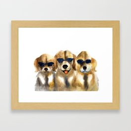 Yellow dogs  in funny glasses Framed Art Print