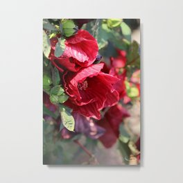 Glorious Giant Red Hibiscus Metal Print