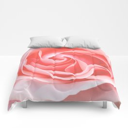 Velvet pink rose - Roses Flowers Flower Comforters