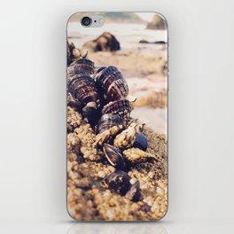 Ocean Wonder iPhone Skin