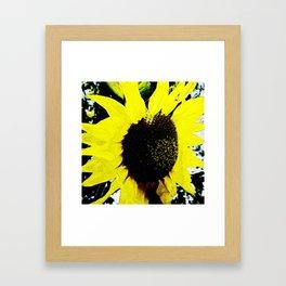 Hana Collection - Sunflower - Himawari Framed Art Print