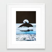 dolphin Framed Art Prints featuring Dolphin by John Turck