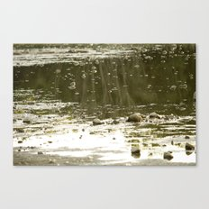 Cove by the lake Canvas Print