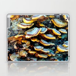 Tree Fungi Pattern Laptop & iPad Skin