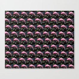 Roses I-A Canvas Print