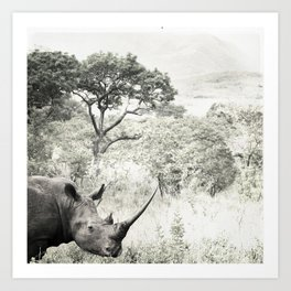 africa is a feeling - rhinocerous Art Print