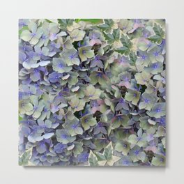 Soft Multi Color Hydra and Ivy leaves Metal Print
