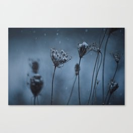 Snow Falls Canvas Print