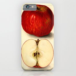 Vintage Botanical Apple iPhone Case