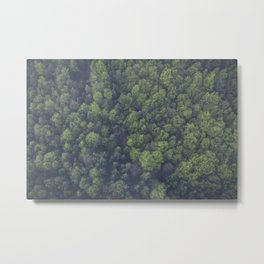 FOREST - TOP - VIEW - PHOTOGRAPHY Metal Print