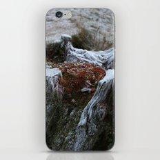 Stump & Frost iPhone & iPod Skin