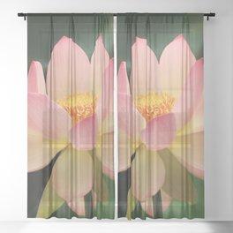 Peaceful Zen Garden Pink Lotus Floral Sheer Curtain