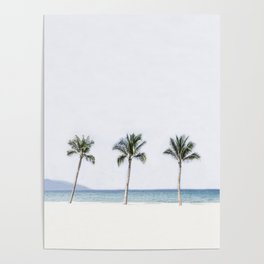 Palm trees 6 Poster
