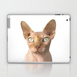 Sphynx cat portrait Laptop & iPad Skin