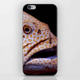 Coral Grouper Being Cleaned iPhone Skin
