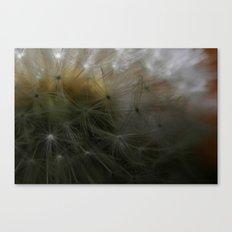 Blow me away Canvas Print