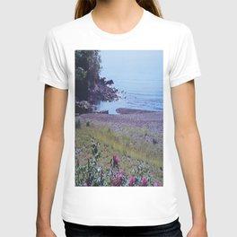 Lake Superior - Duluth, MN - Wild Veda T-shirt