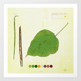 Northern Catalpa Tree Detail 2 Art Print