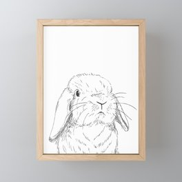 Curious Holland Lop Bunny Framed Mini Art Print