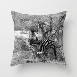 Are you black with white stripes? Throw Pillow