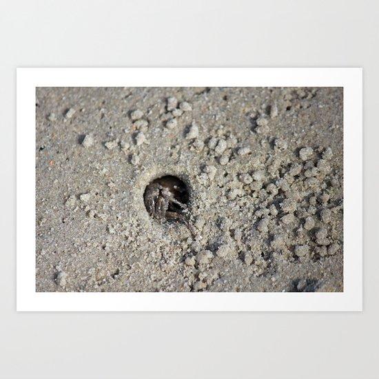Peek-a-boo Crab Art Print