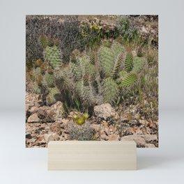 Budding Cactus Mini Art Print