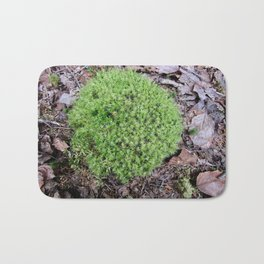 The Fairy's Futon Bath Mat