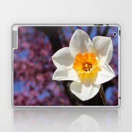 Daffodil with Cherry Blossoms Laptop & iPad Skin