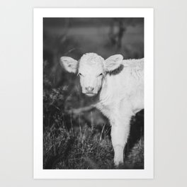 Cute Calf (Black and White) Art Print