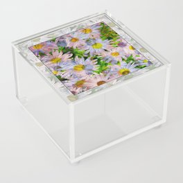 DAISEY MADNESS ABSTRACT  Acrylic Box