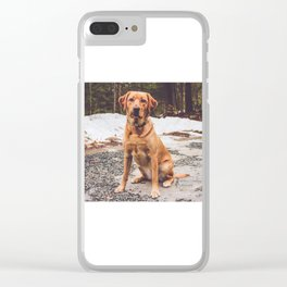 Penny Clear iPhone Case